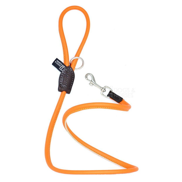 Rolled Leather Leash in Tangerine - This Dog's Life