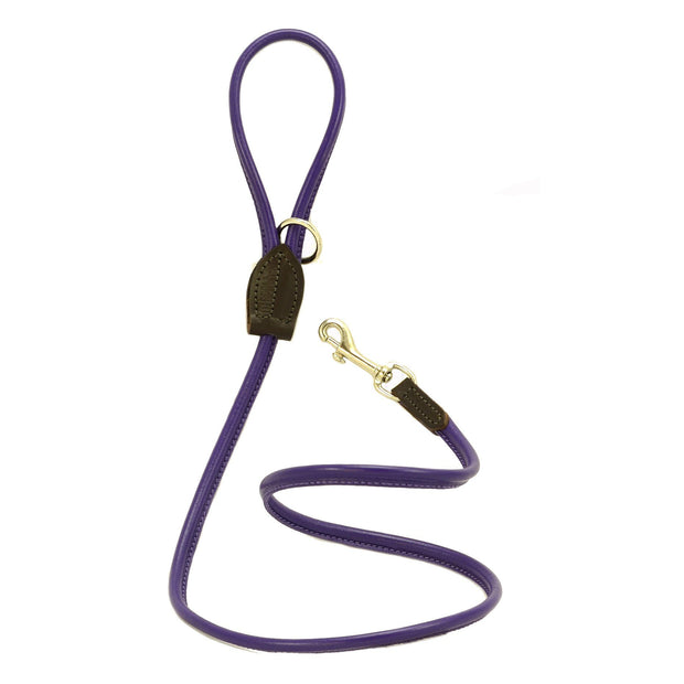 Rolled Leather Leash in Black with Brass Clasp - This Dog's Life