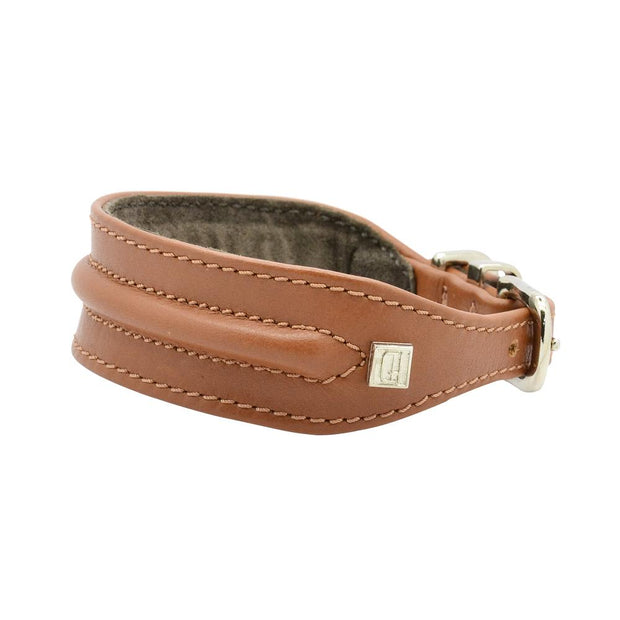 Horizon Hound Leather Collar in Tan - This Dog's Life