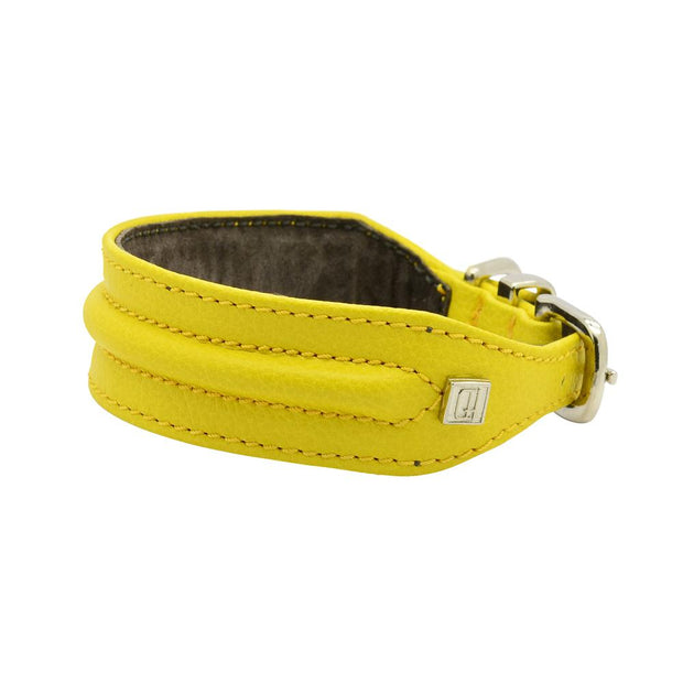 Horizon Hound Leather Collar in Yellow Sunburst - This Dog's Life