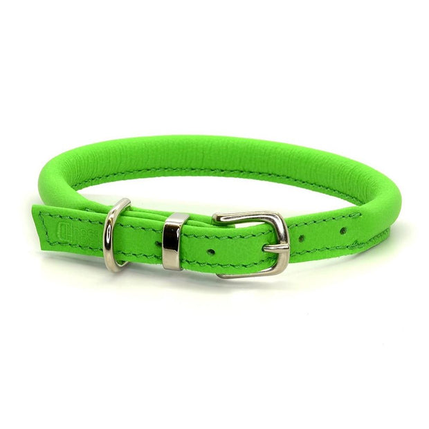 Rolled Leather Collar in Lime - This Dog's Life