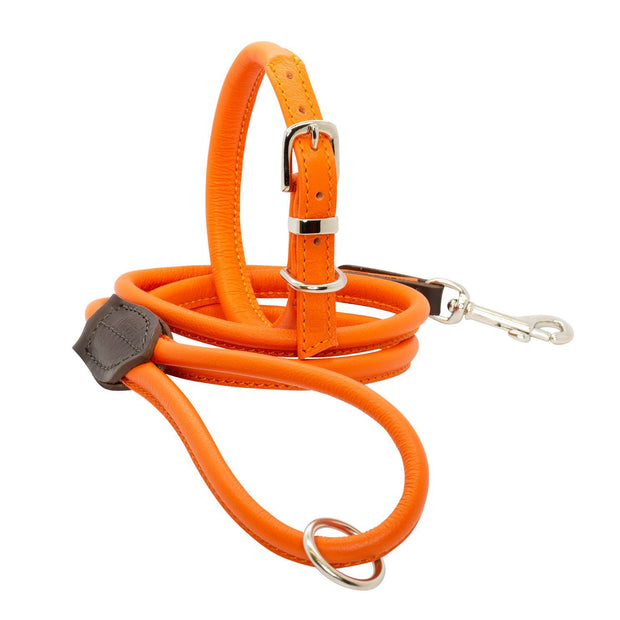 Rolled Leather Collar in Tangerine - This Dog's Life