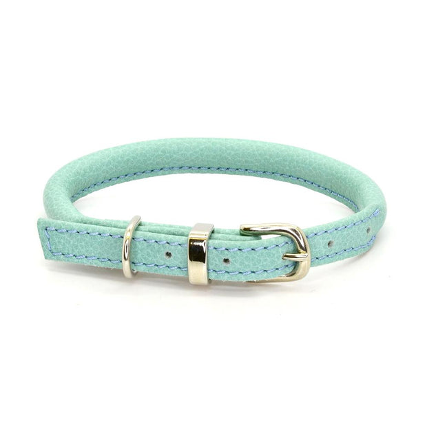 Rolled Leather Collar in Aqua - This Dog's Life