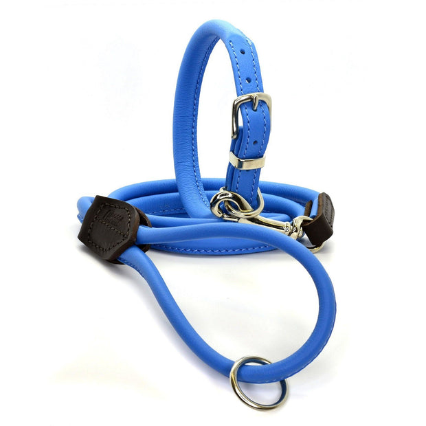 Rolled Leather Collar in Azure Blue - This Dog's Life