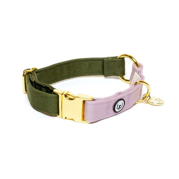 Two-Tone Canvas Collar in Navy Blue and Grass Green - This Dog's Life