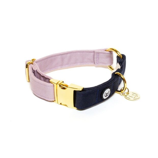 Two-Tone Canvas Collar in Navy Blue and Natural Beige - This Dog's Life