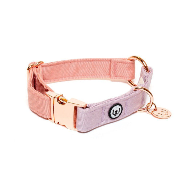 Two-Tone Canvas Collar in Blossom Pink and Grass Green - This Dog's Life