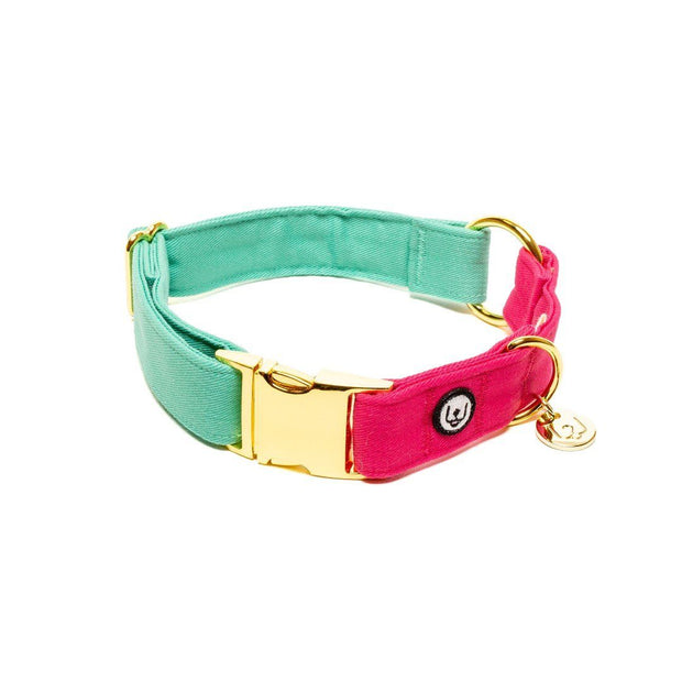 Two-Tone Canvas Collar in Magenta Pink and Seafoam Green - This Dog's Life