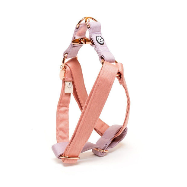 Two-Tone Canvas Easy Step-In Harness in Blossom Pink and Lilac Purple - This Dog's Life