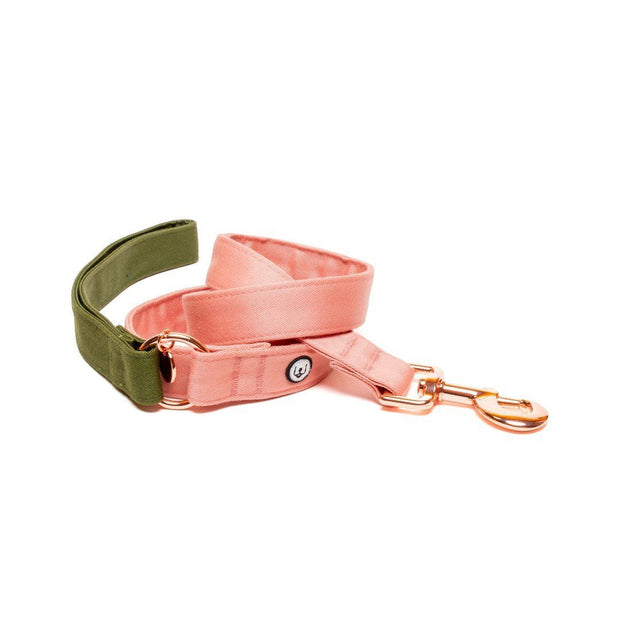 Two-Tone Canvas Leash in Blossom Pink and Grass Green - This Dog's Life