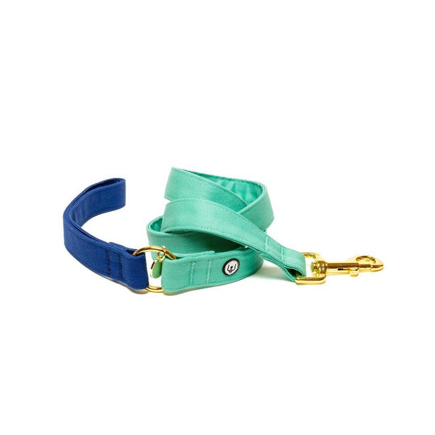Two-Tone Canvas Leash in Royal Blue and Seafoam Green - This Dog's Life