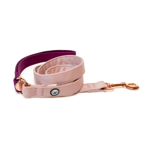 Two-Tone Canvas Leash in Rose Pink and Plum Purple