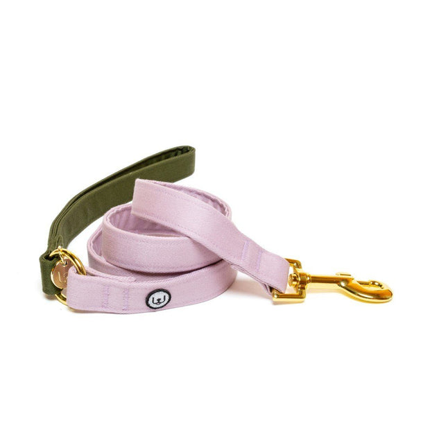 Two-Tone Canvas Leash in Lilac Purple and Grass Green