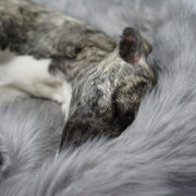 Ultimate Faux Fur Dog Blanket in Silver - This Dog's Life