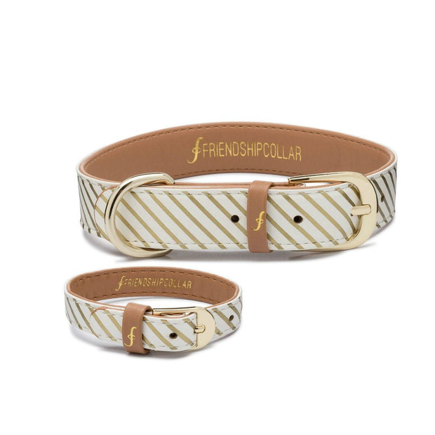 Vegan Leather Dog Collar and Matching Bracelet in Gold Stripe - This Dog's Life