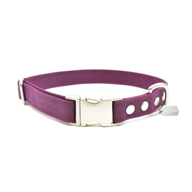Vegan Eco-Friendly Canvas Collar in Raspberry Red - This Dog's Life