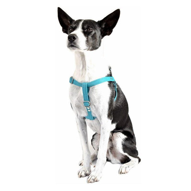 Vegan Eco-Friendly Canvas Harness in Navy Blue - This Dog's Life