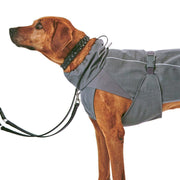 High-Performance Softshell Dog Coat in Dusty Blue