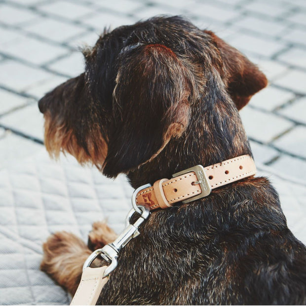 Hand-Braided Leather Collar in Tan - This Dog's Life