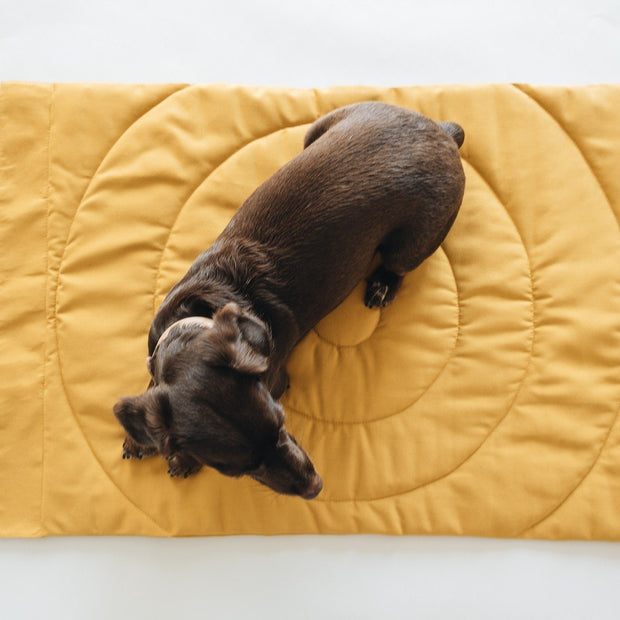 Travel Dog Blanket Mat in Mustard Yellow