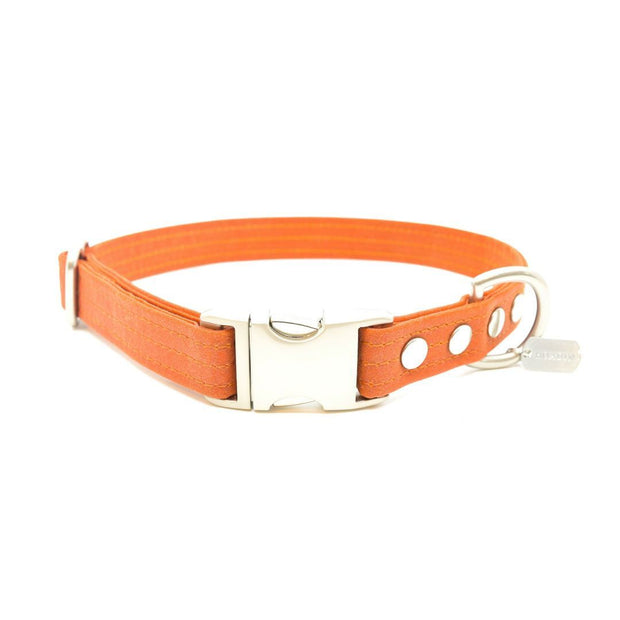 Vegan Waxed Canvas Collar in Tangerine Orange - This Dog's Life