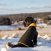 Reversible Waterproof Quilted Dog Jacket in Sunshine Yellow and Black