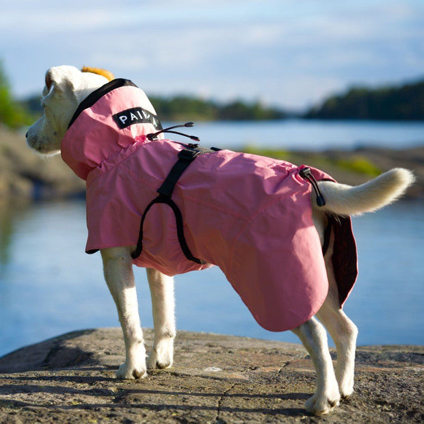 Reflective High-Visibility Wool-Lined Dog Raincoat in Blush Pink