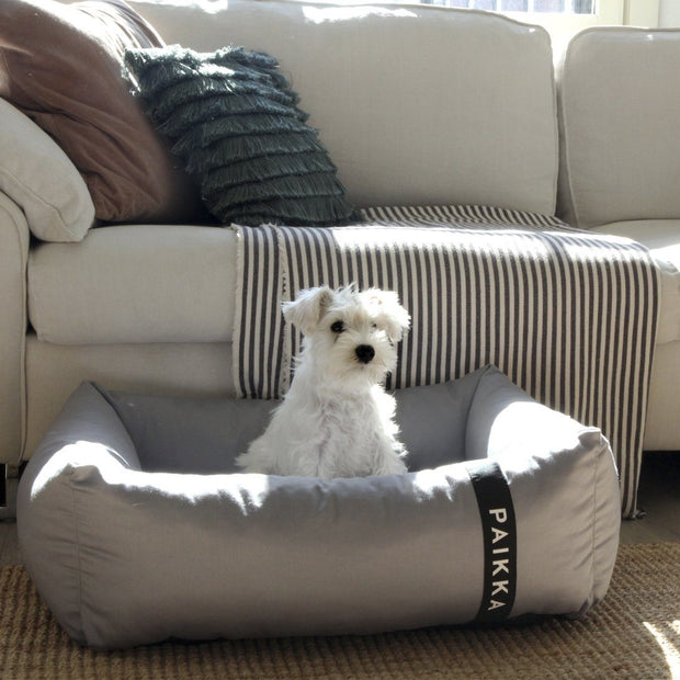 High-Tech Restorative Dog Bed - This Dog's Life
