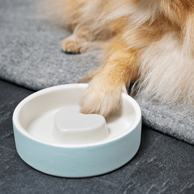 Slow Feeder Ceramic Dog Bowl in Blue Heaven - This Dog's Life