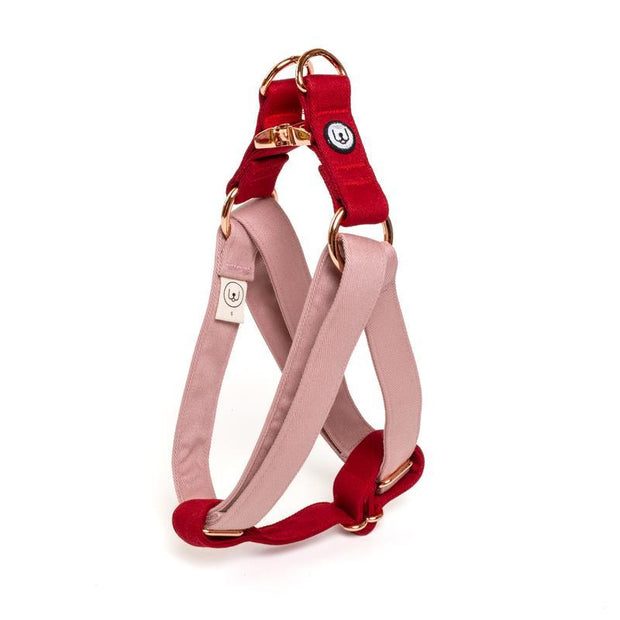Two-Tone Canvas Easy Step-In Harness in Rose Pink and Ruby Red
