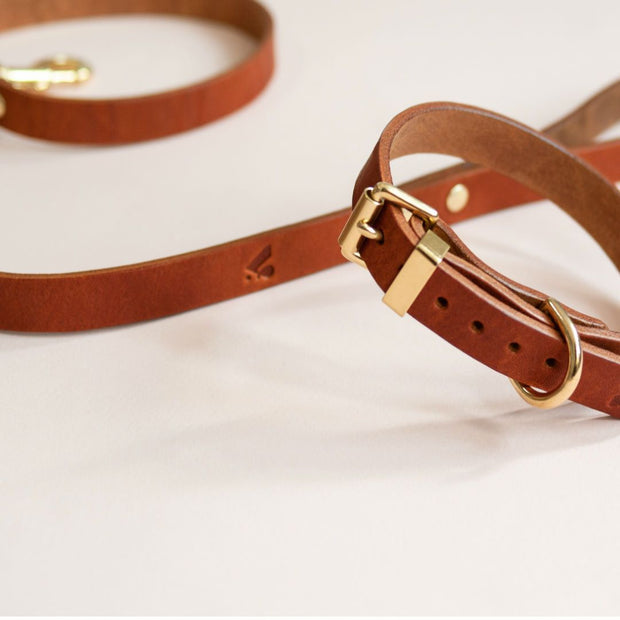 The Essential Classic Leather Collar in Tan