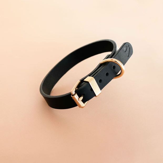 The Essential Classic Leather Collar in Black - This Dog's Life