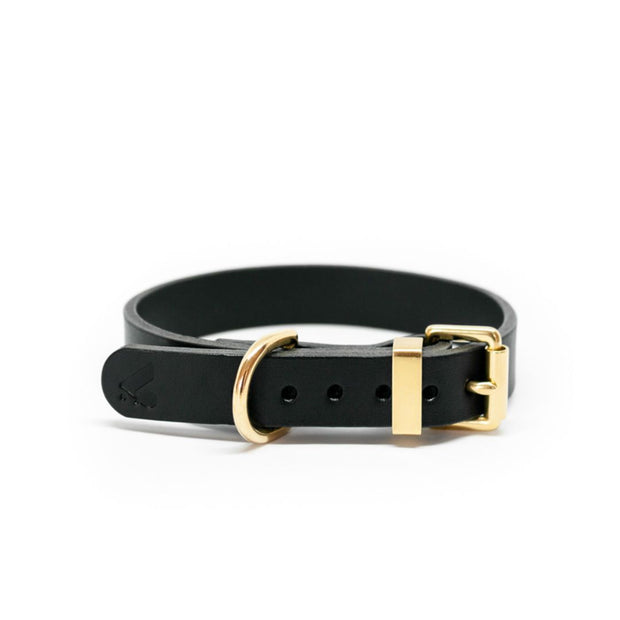 The Essential Classic Leather Collar in Navy Blue - This Dog's Life