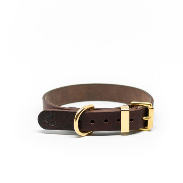 The Essential Classic Leather Collar in Nude - This Dog's Life