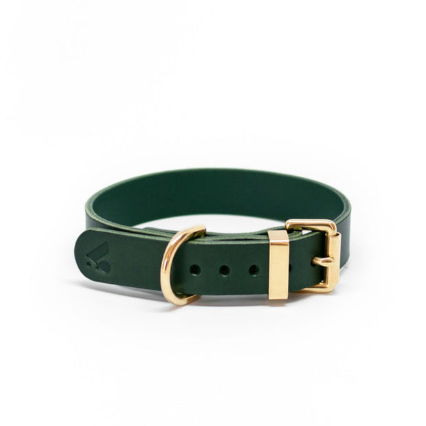 The Essential Classic Leather Collar in Jade Green - This Dog's Life