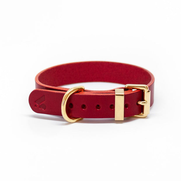 The Essential Classic Leather Collar in Ruby Red - This Dog's Life