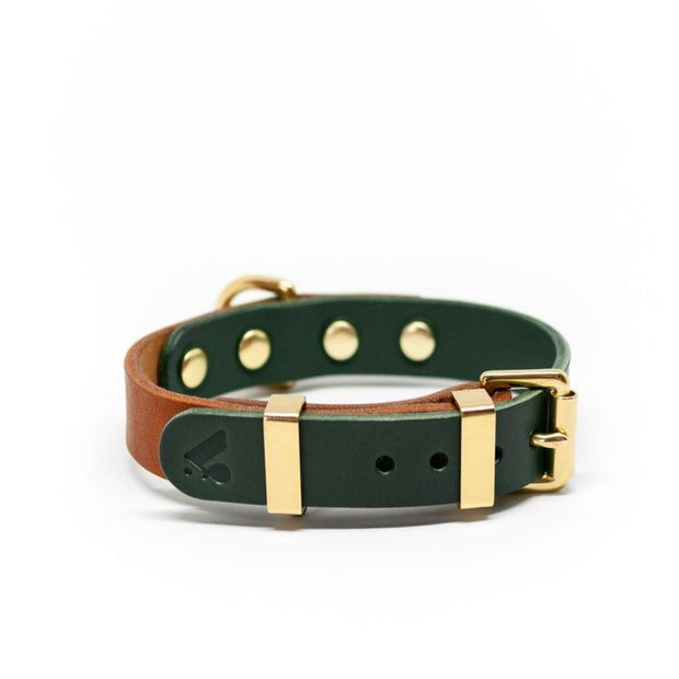 Two-Tone Leather Collar in Tan and Jade - This Dog's Life