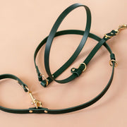 The Essential 5-in-1 Leather Leash in Jade Green - This Dog's Life