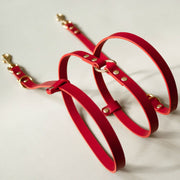 The Essential 5-in-1 Leather Leash in Ruby Red - This Dog's Life