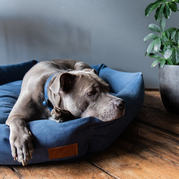 Hexagon Dog Bed in Blue Ocean - This Dog's Life