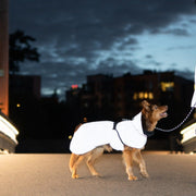 Reflective High-Visibility Wool-Lined Dog Raincoat in Black