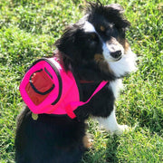 Canvas Mini Dog Backpack in Pink and Orange - This Dog's Life