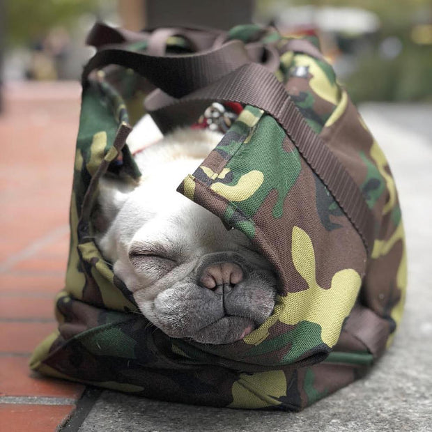 Cordura Camo Zipper Dog Carrier - This Dog's Life