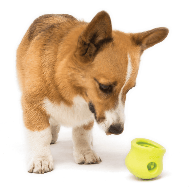 Non-Toxic Tough Puzzle and Treat Pack for Problem Solving