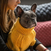 Hand-Knit Wool Dog Sweater in Marigold