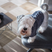 Hand-Knit Wool Dog Sweater in Slate