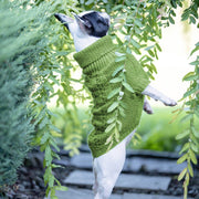 Hand-Knit Wool Dog Sweater in Grass - This Dog's Life