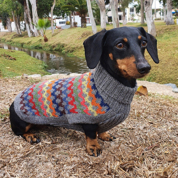 Multicolored Crossroads Wool Dog Sweater