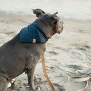 Stonewashed Linen Bandana in Denim Blue - This Dog's Life