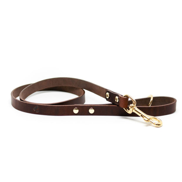 The Essential Classic Leather Collar in Coffee Brown - This Dog's Life